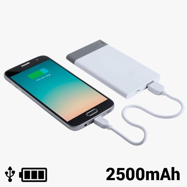 Netzteil mit abnehmbarem USB-Anschluss 2500 mAh 8 GB 145242