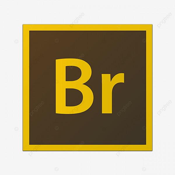 Adobe Bridge: Fotoverwaltung
